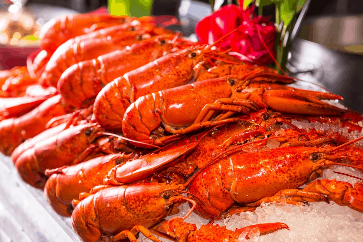 Lobsters in Boston.